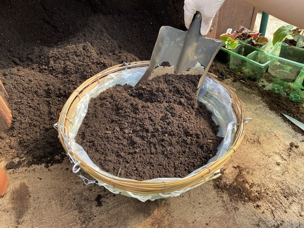 Fill basket with soil before planting summer plants