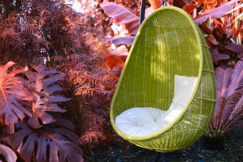 garden egg chair in garden