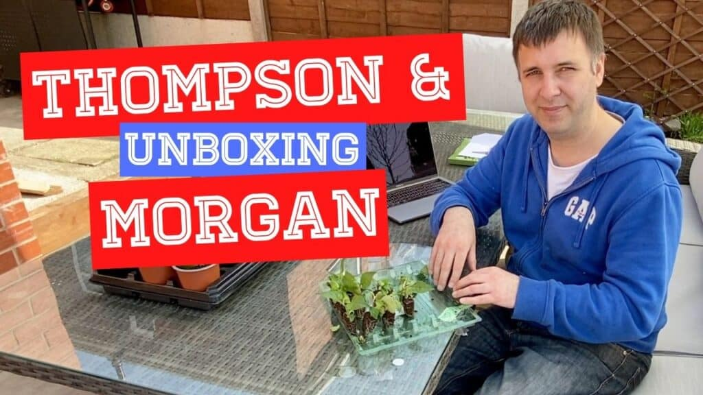 Thompson & Morgan Unboxing Plug Plants and Review