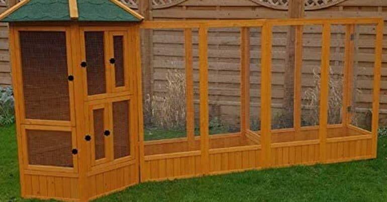 Best Outdoor Garden Bird Aviary