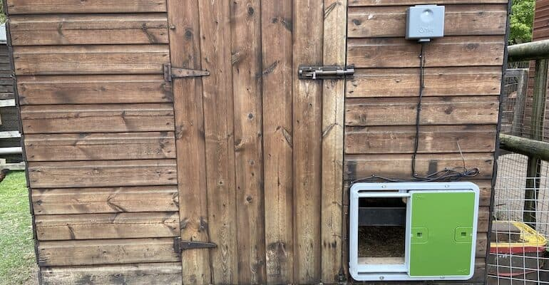 Omlet Automatic Chicken Coop Door Opener Review