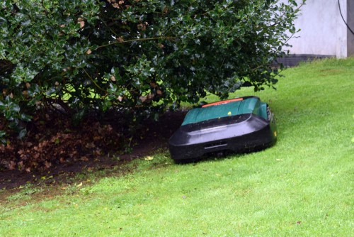 Robot lawn mower in small garden on slope lawn
