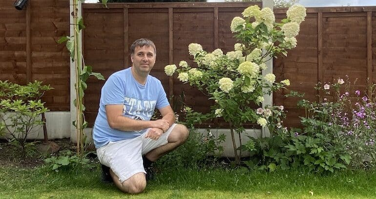 How Tall and Wide do Hydrangeas Grow