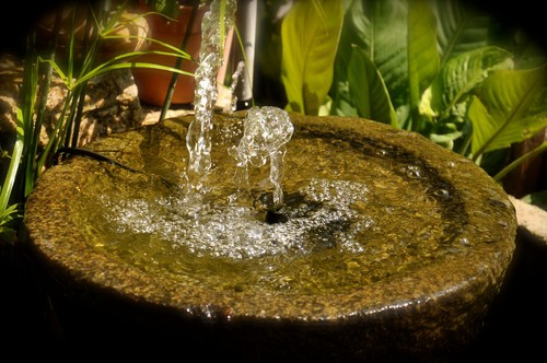 Indoor water fountain with clean water