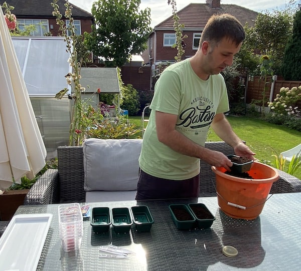 filling trays with seed compost for sowing winter pansies