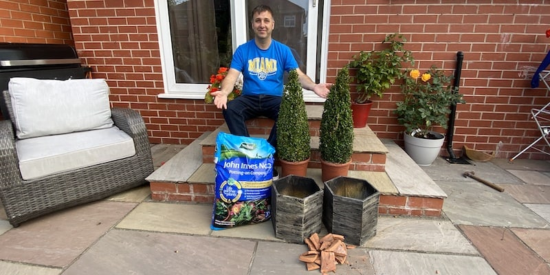 How to plant buxus topiary into pots – step by step