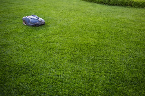 Setting how you want a robot lawn mower to mow