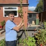 What to do with hollyhocks after flowering