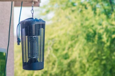 Do you have issues with flies in your home or in the garden around food? I compared the best electric fly killers that use blue UV lights to attract flies & zap.